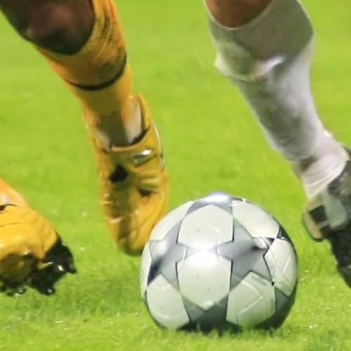 Fotbollsplan Fröblandning Euro 100
