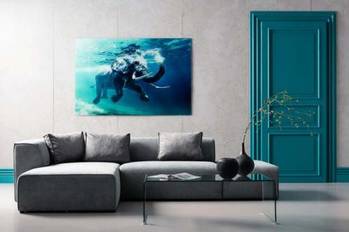 Glastavla Foto Swimming Elephant 120x180 cm
