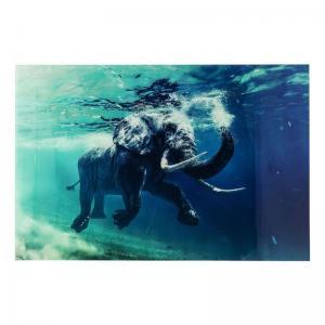 Glastavla Foto Swimming Elephant 120x180...