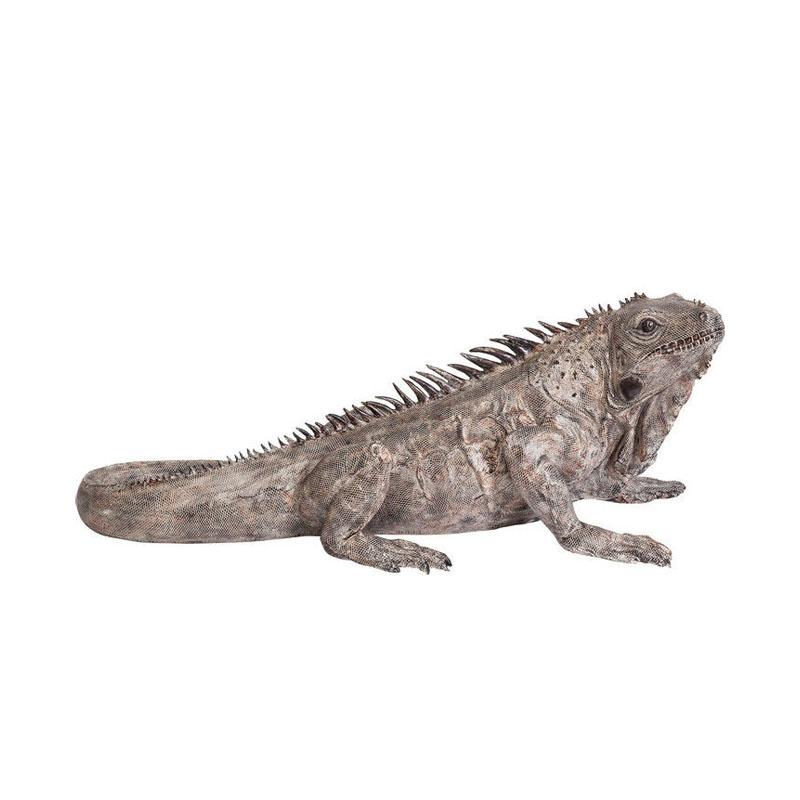 Dekor Iguana XL 135 cm