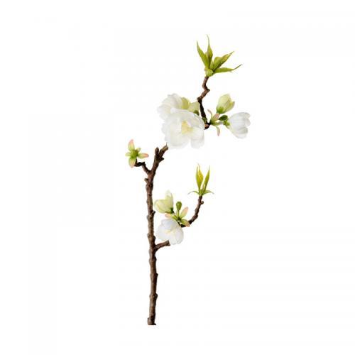 Kvist Äppelblom, 40 cm.