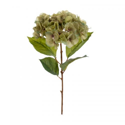 Kvist Hortensia Grön, 45 cm