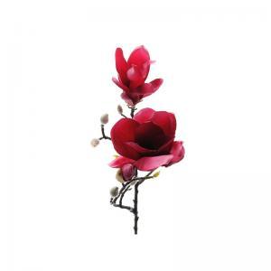Kvist Magnolia Röd, 60 cm