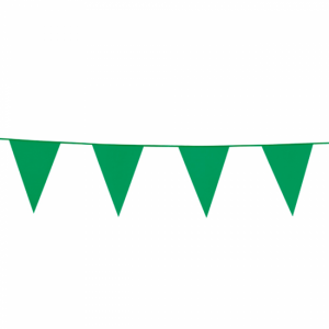 Grön Vimpel 10meter