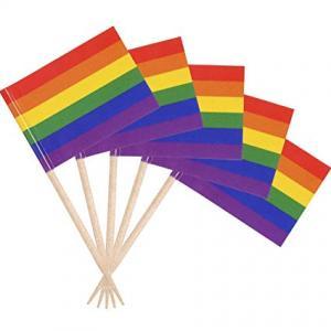 Pride festflaggor tandpetare 50-pack