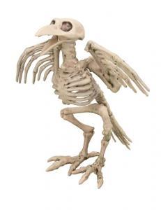 Skelett Fågel Dekoration