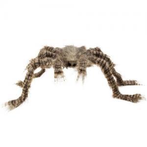 Hårig Spindel
