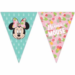 vimpel Minnie Mouse