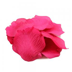 Rose pedal cerise rosa