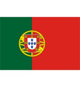 Liten Flagga portugal