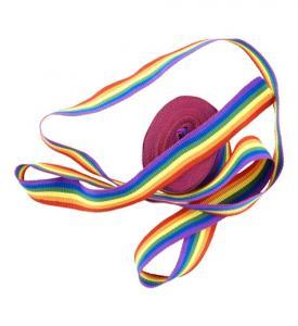 Pridefärgat textilband 4m