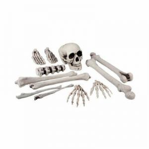 Skelett i säck