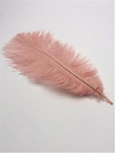 Strutsfjäder ljus rosa