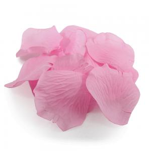 Rose pedal rosa