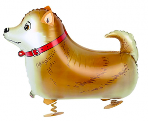 Gående Hund Hachiko