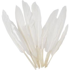 vit fjädrar