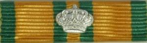 Nijmegen med silverkrona