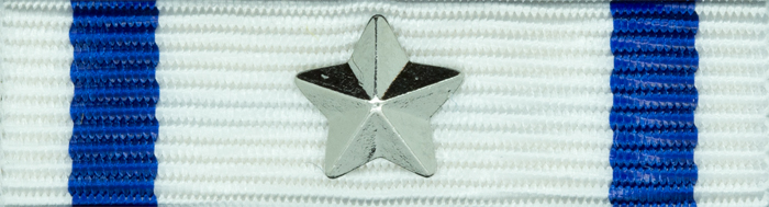 CISM med silverstjärna