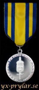 Försvarsmaktens tjänstgöringsmedalj i silver