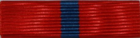 Flygvapenföreningarnas Riksförbunds förtjänsttecken
