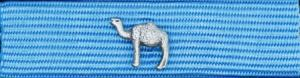 Försvarsmaktens medalj för internatioenlla insatser i brons med dromedar