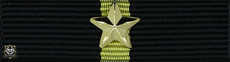 Politimedaljen med 1 stjerne (*)