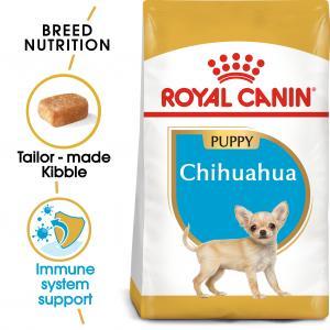 Chihuahua Junior 500 g