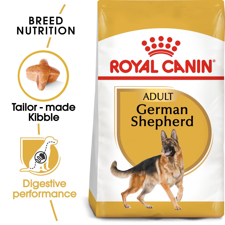German Shepherd Adult 11 kg