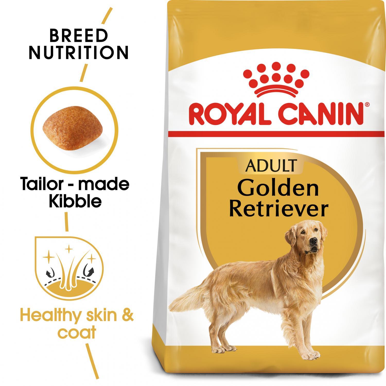 Golden Retriever Adult 12 kg