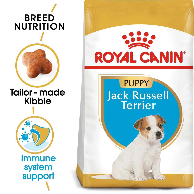 Jack Russel Junior 1,5 kg