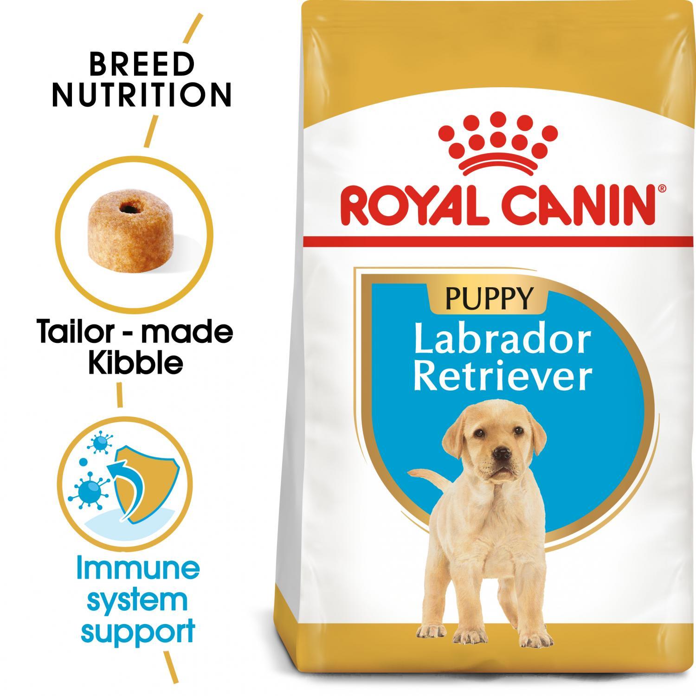 Labrador Retriever Junior 3 kg