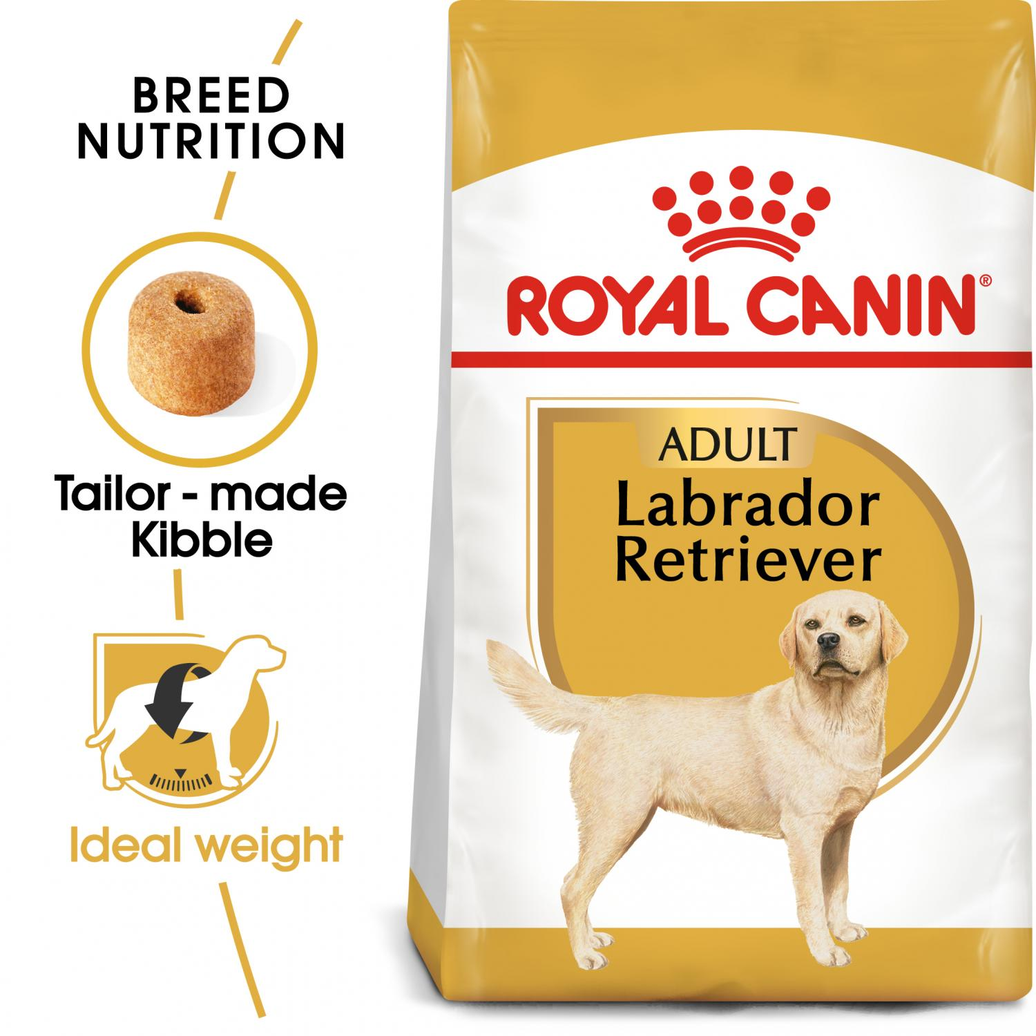 Labrador Retriever Adult 12 kg