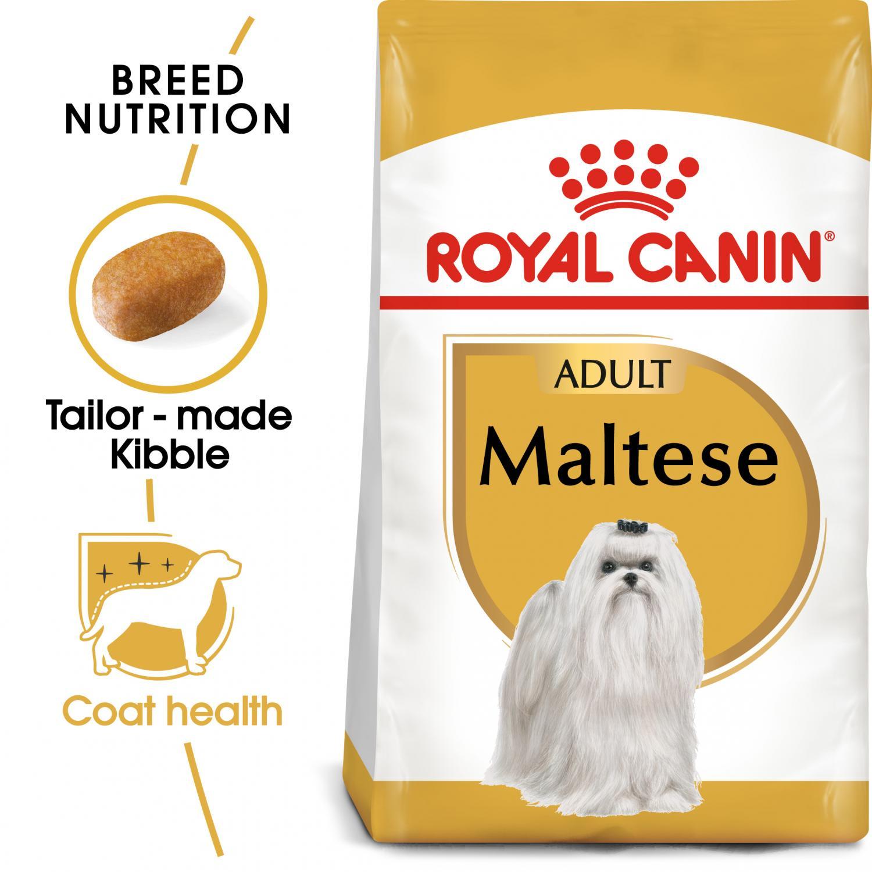 Maltese Adult 1,5 kg