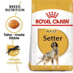 Setter Adult 3 kg
