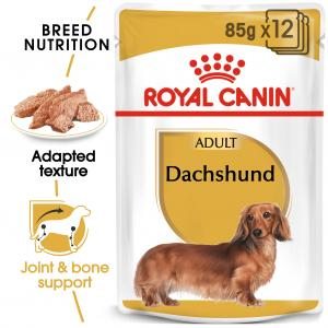 Dachshund Adult WET 12*85 g