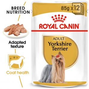 Yorkshire Terrier Adult WET 12*85 g