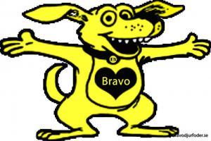 FRYST Bravo Special m vom 1kg (25gr burgare)