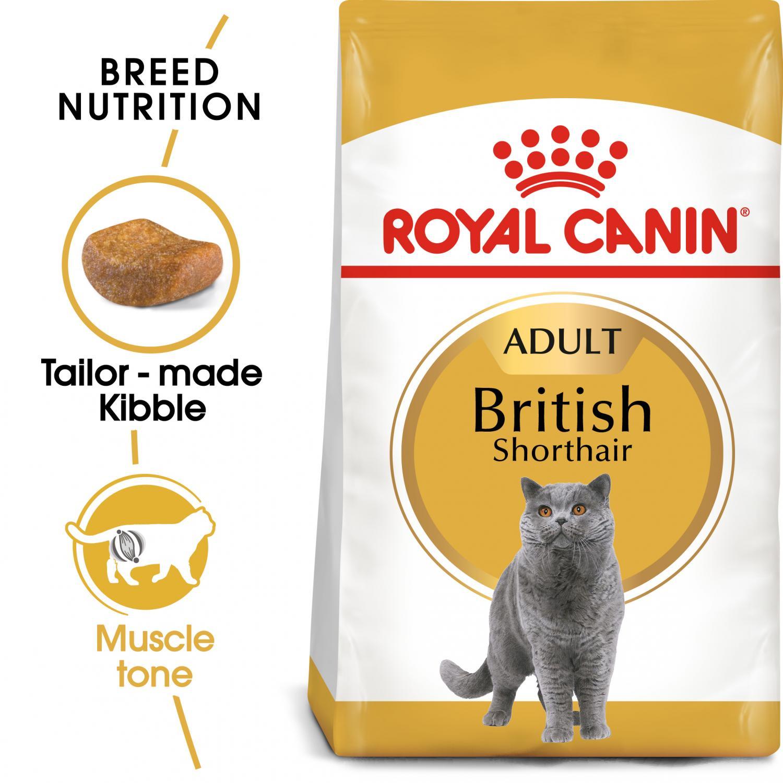 British Shorthair Adult 10 kg