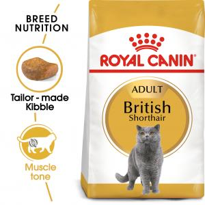 British Shorthair Adult 10 kg