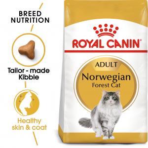 Norwegian Forest Cat Adult 2 kg