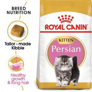 Persian Kitten 10 kg