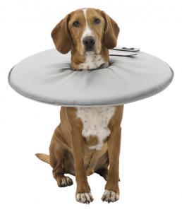 Hundkrage, XL: 60-64 cm/29 cm, grå
