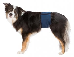 Hanhundsskydd, L: 55-65 cm, mörkblå