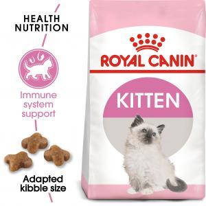 Kitten 10 kg