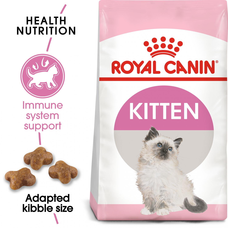 Kitten 4 kg