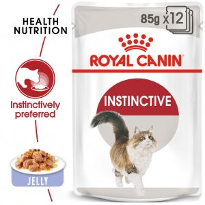 FHN Instinctive Jelly 85 g