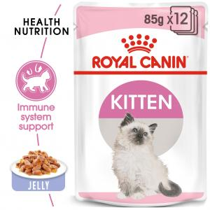 FHN Kitten Jelly 85 g