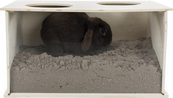 Grävlåda med plexifront för kanin,58 × 30 × 38 cm