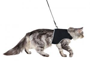 Kattsele mjuk med koppel, 36-54cm, 1,20 m, svart