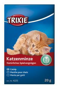 Catnip 20 g